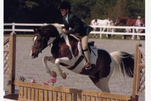 Photo #17: Autumn Sun Stables. Horseback Riding Lessons
