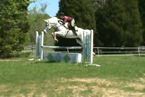 Photo #20: Autumn Sun Stables. Horseback Riding Lessons