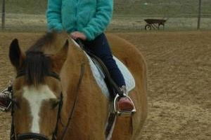Photo #1: Horse back riding lessons- Summer Sessions avaliable!