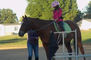 Photo #3: Horse back riding lessons- Summer Sessions avaliable!