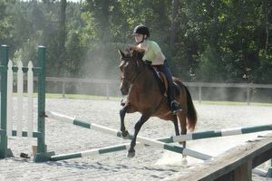 Photo #6: Horse back riding lessons- Summer Sessions avaliable!