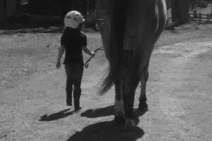 Photo #7: Horse back riding lessons- Summer Sessions avaliable!