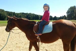 Photo #9: Horse back riding lessons- Summer Sessions avaliable!