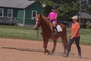 Photo #11: Horse back riding lessons- Summer Sessions avaliable!