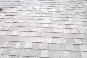 Photo #7: Bruno's roofing and construction