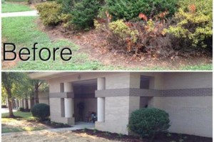 "Photo #8: Pride Landscaping.  ""Cutting Grass, Not Corners"""