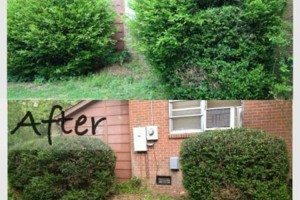 "Photo #6: Pride Landscaping.  ""Cutting Grass, Not Corners"""