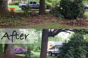 "Photo #1: Pride Landscaping.  ""Cutting Grass, Not Corners"""