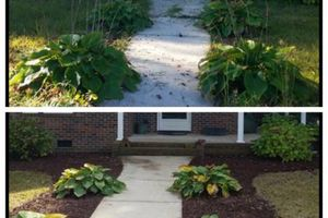 Photo #6: Call DHN Landscaping for all of your Lawn Care and Landscaping needs!