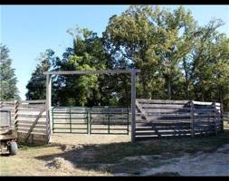 Photo #5: Horse Boarding Summer Specials! Freedom Hill Stables