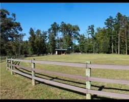 Photo #3: Horse Boarding Summer Specials! Freedom Hill Stables