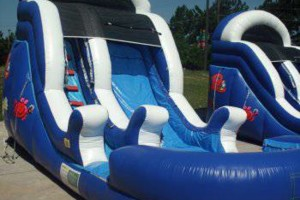 Photo #8: WE BOUNCE AROUND. BOUNCE HOUSES AND INFLATABLES FOR RENT