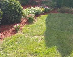 Photo #1: Lawn care. The landscaping crew ( TLC)