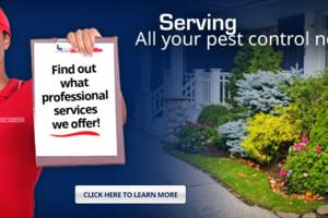 Photo #1: EJ's Pest Control