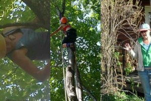Photo #1: Insured Arborists. Affordable Tree Care
