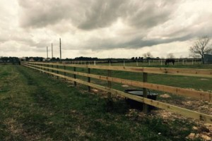 Photo #11: Ranch/Farm Fencing