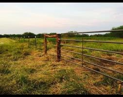 Photo #2: Ranch/Farm Fencing
