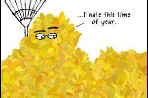 Photo #1: Leaves Be Gone - yard is about $65