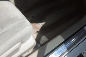 Photo #9: Rod's Mobile Detail Service. Wash&Wax $50