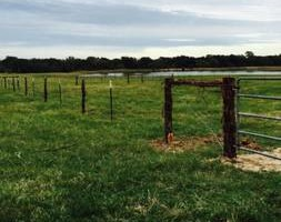 Photo #5: Master Fencing of Texas