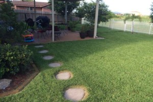 Photo #1: MOW YARDS: TRIM, EDGE, EVERYTHING! PROFESSIONAL RESULTS!