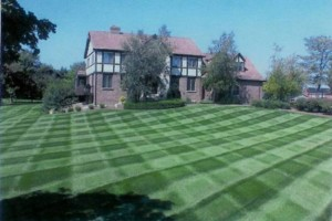 Photo #1: College Cutters lawn mowing service