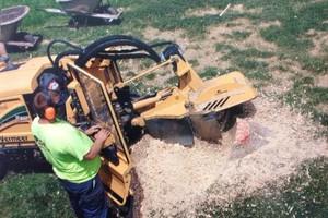 Photo #7: Stump Grinding - Omaha Stump Grinding & Landscape Service