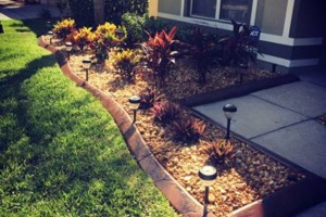 Photo #8: Cypress Curbs LLC. Concrete, Landscape, Curbing & Borders