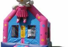 Photo #8: RENTAL BOUNCE HOUSE, WATER SLIDES AND MORE!