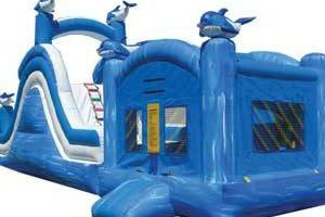 Photo #6: RENTAL BOUNCE HOUSE, WATER SLIDES AND MORE!