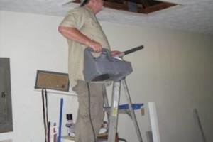 Photo #15: Safari Pest Control, LLC
