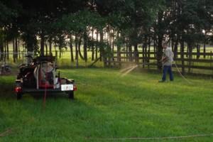 Photo #9: Safari Pest Control, LLC