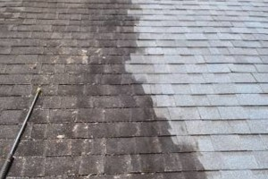 Photo #6: HYDRO WASH. Roof Cleaning Restoration