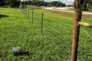 Photo #1: Evan's Custom Fence install