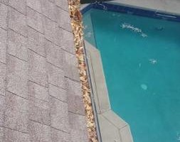 Photo #2: Quality lawn care and gutter cleaning
