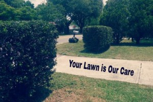 Photo #3: Your Lawn Our Care. Bi weekly cuts $20.00 -$40.00