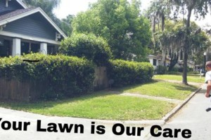 Photo #1: Your Lawn Our Care. Bi weekly cuts $20.00 -$40.00