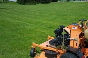 Photo #22: DRC - residential and small business Lawn Care