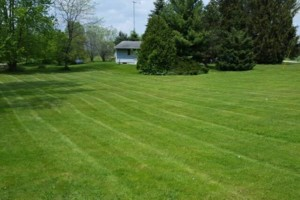 Photo #20: DRC - residential and small business Lawn Care