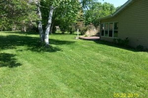Photo #17: DRC - residential and small business Lawn Care