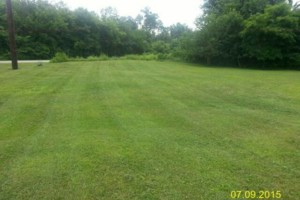 Photo #11: DRC - residential and small business Lawn Care