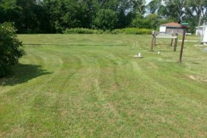 Photo #8: DRC - residential and small business Lawn Care