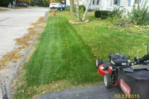 Photo #5: DRC - residential and small business Lawn Care