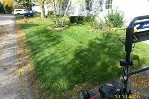 Photo #3: DRC - residential and small business Lawn Care
