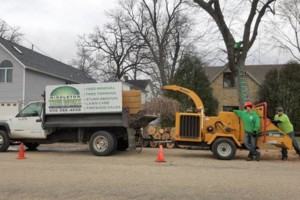 Photo #9: Tree & Lawn Care Services Available! Middleton Tree Worx