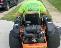 Photo #2: Tree & Lawn Care Services Available! Middleton Tree Worx