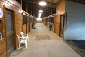Photo #5: Full-Service Horse Boarding Facility