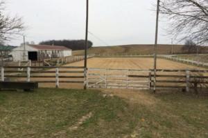 Photo #2: Full-Service Horse Boarding Facility