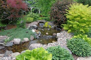 Photo #4: Aquatica. Pond and Water Garden Service