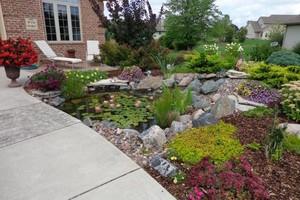 Photo #2: Aquatica. Pond and Water Garden Service